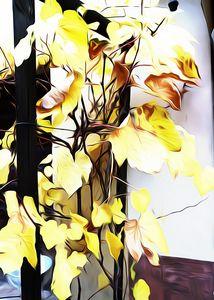Grape yellow leaves