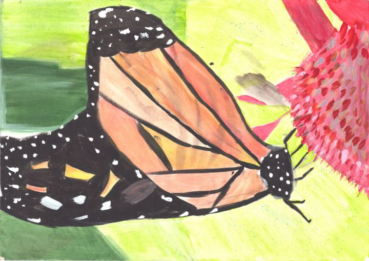 Butterfly - Lyric Hillman