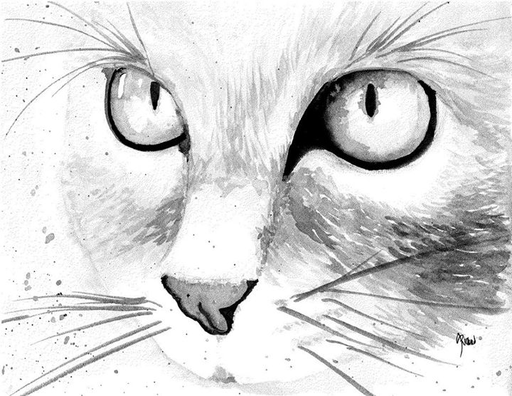 Meow - Amanda Richmond