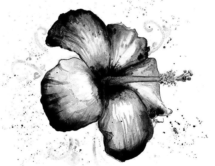Hibiscus Splatter - Amanda Richmond
