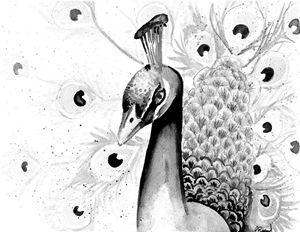 Peacock Splatter Painting