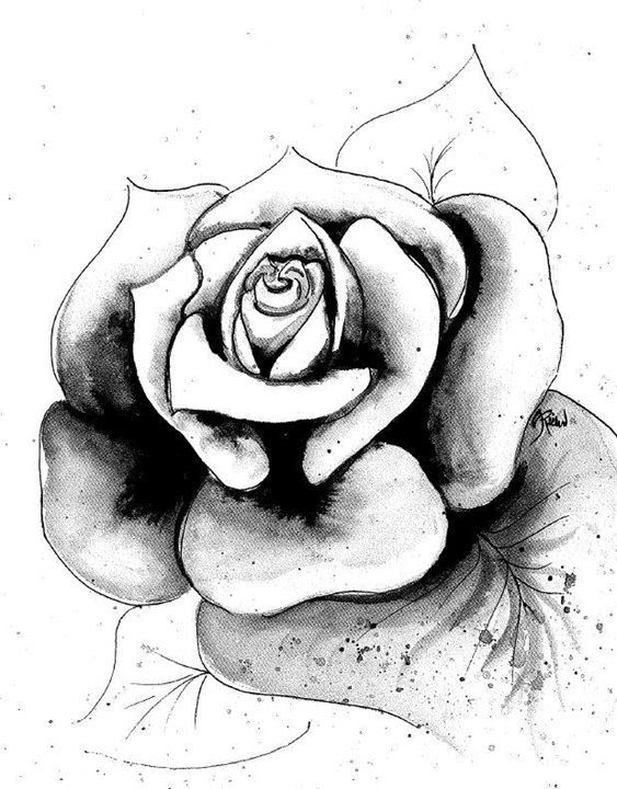 Rose Splatter - Amanda Richmond