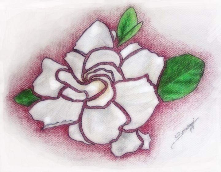 Glorious Gardenia - Somogyi