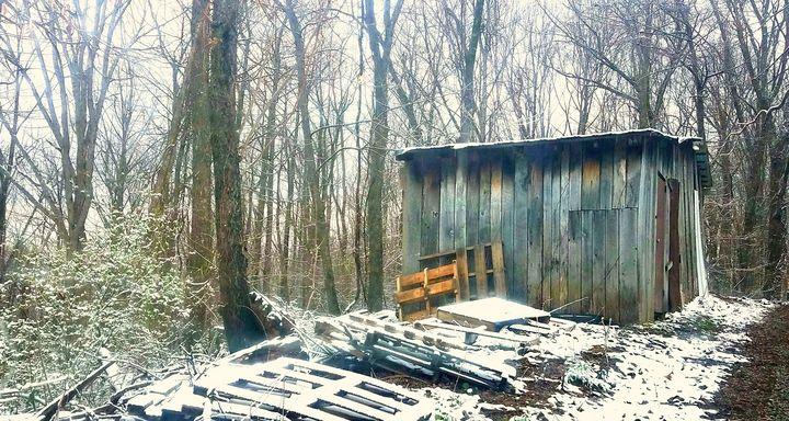 shed - EandCNov3