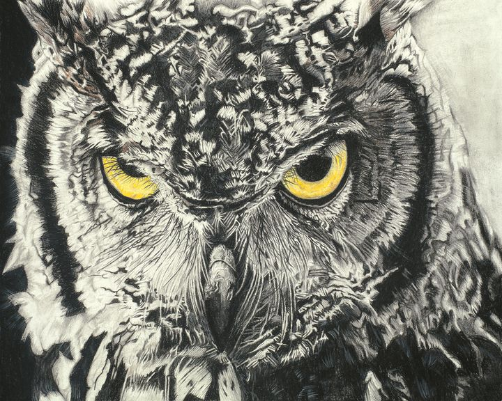 Owl - Drawing and Marquetry by Arash