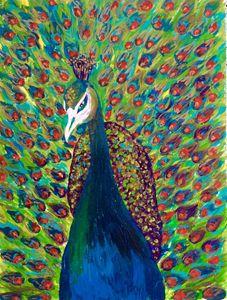 Vibrant Peacock