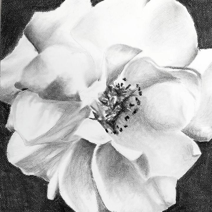 Flower 3 (gardenia) - Aaroncesh Art