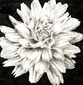 Flower 4 (Dahlia)