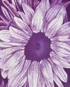 Purple Sunflower (Monochromatic)