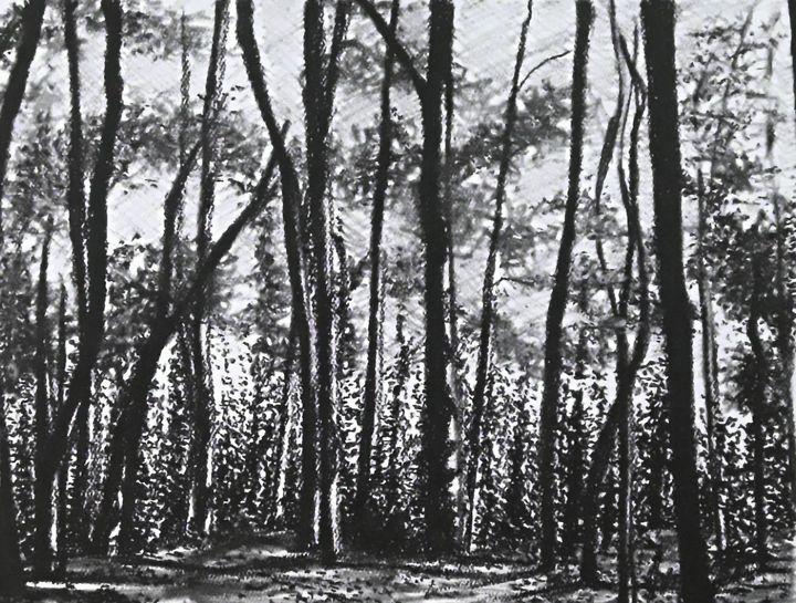 Dark Woods - Aaroncesh Art
