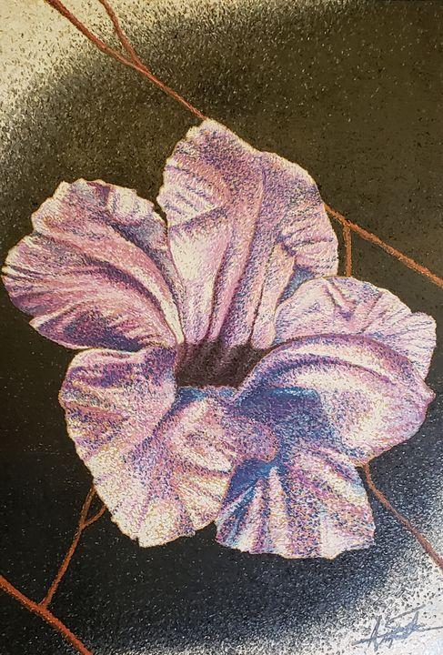 Purple Mexican Petunia - Aaroncesh Art