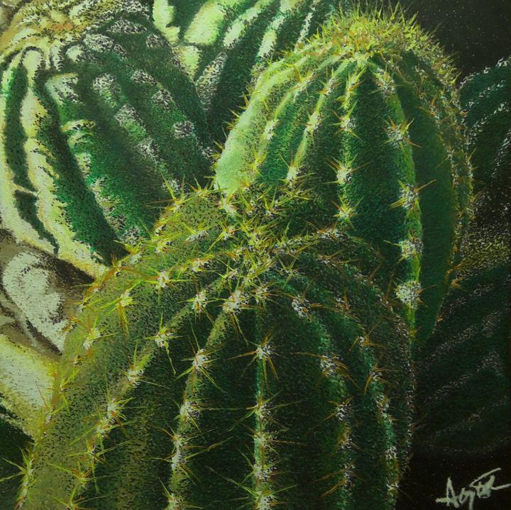 Golden Barrel Cacti - Aaroncesh Art