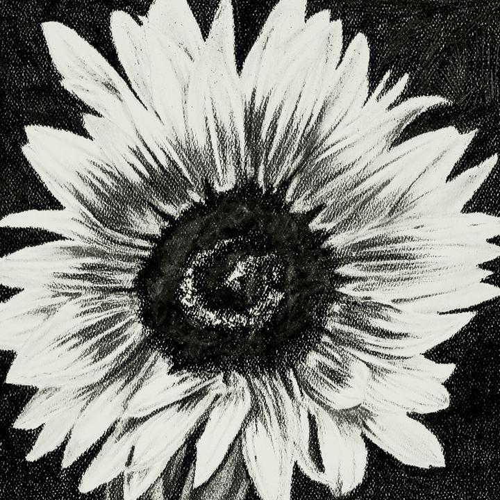 Flower 2 (Sunflower) - Aaroncesh Art