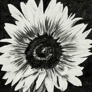 Flower 2 (Sunflower)