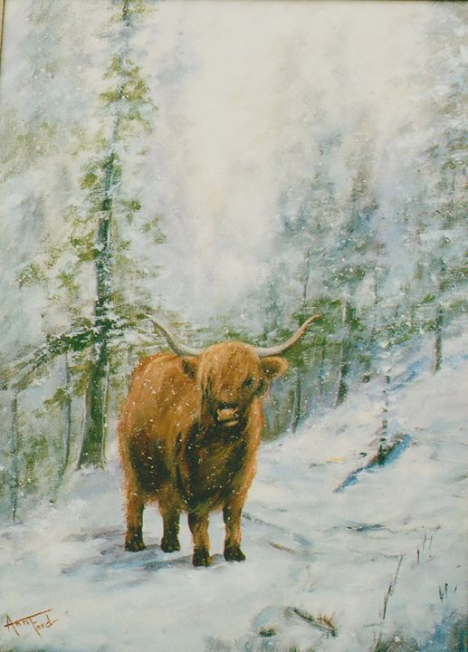 Highlander - Ann Ford Fine Art