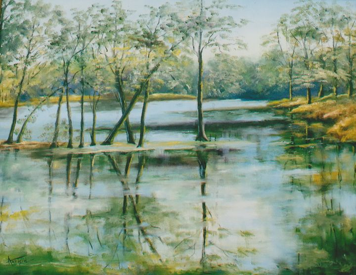 Backwater Reflections - Ann Ford Fine Art