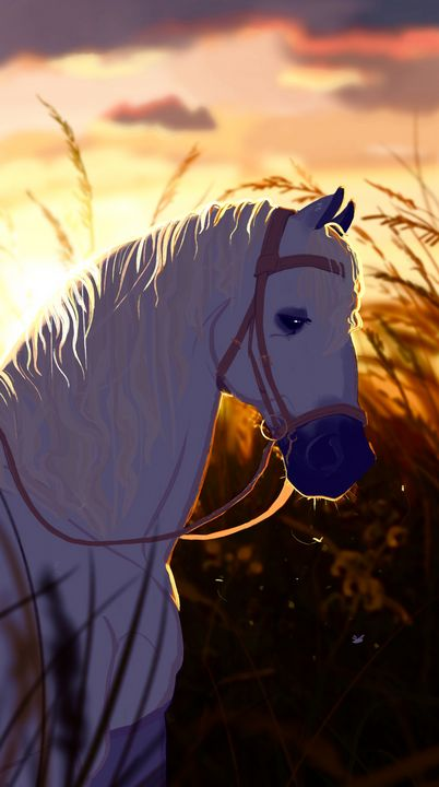 Horse in the sunset field - Adele  Spatay