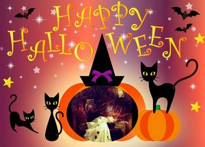 Happy Halloween With Black Cats