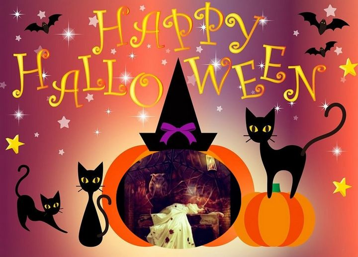 Happy Halloween With Black Cats - Cris Rodrigues