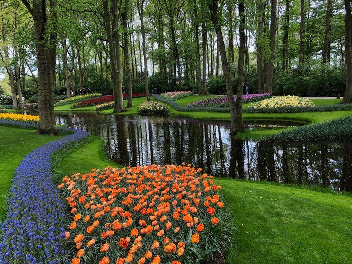 Water View of  Keukenhof Gardens - Rebecca K. Williams