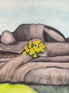 Birnham Rocks and Yellow Flowers