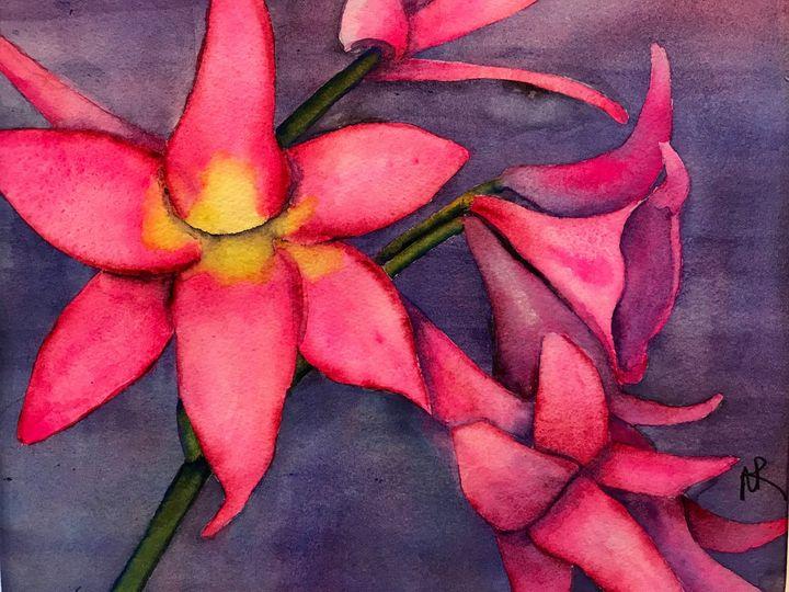 Pink Amaryllis Bella Donna - Nancy Riedell Fine Arts