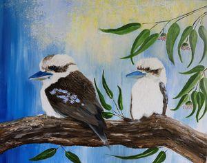 Kookaburras in a gum tree