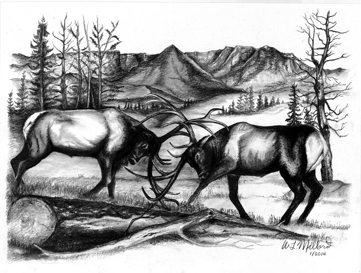 Doin' Battle - Millard Saddle Repair & Art
