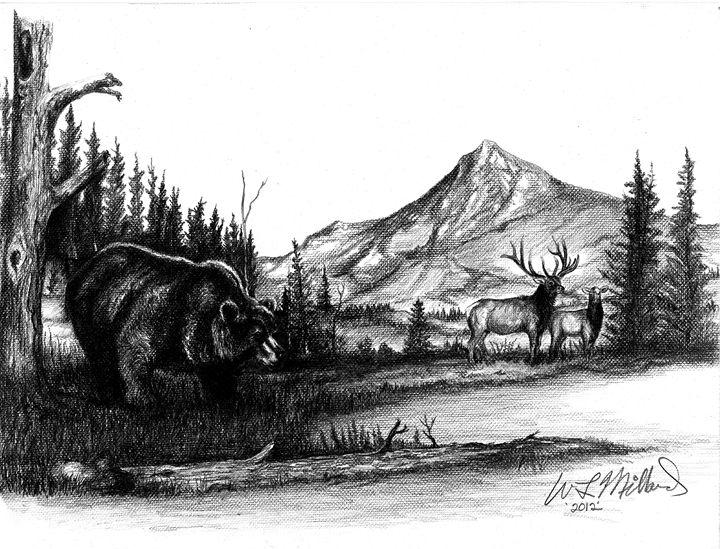 Grizzly - Millard Saddle Repair & Art