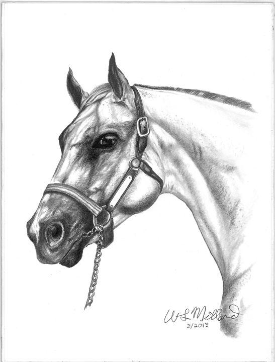 My Horse - Millard Saddle Repair & Art