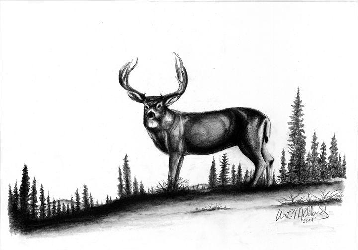 Buck Deer - Millard Saddle Repair & Art