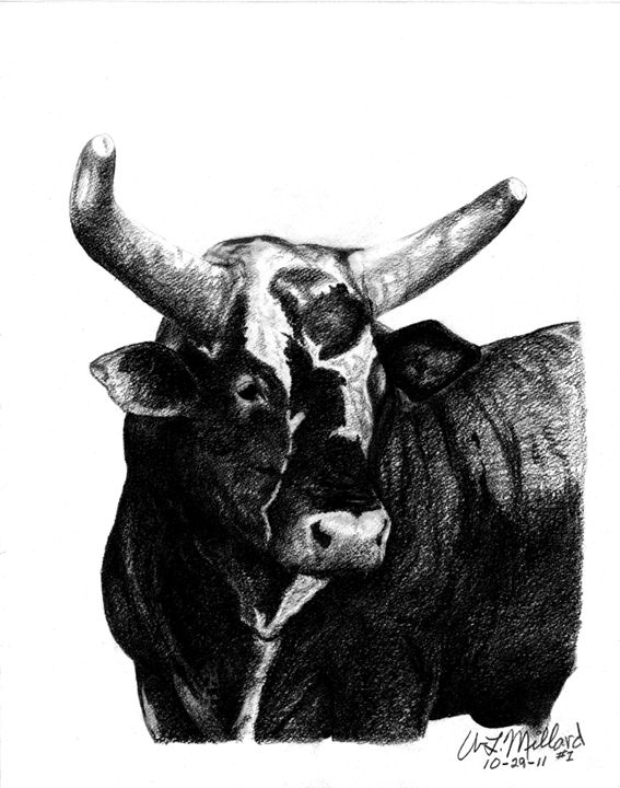 Bushwacker - Millard Saddle Repair & Art