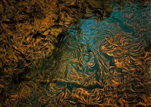 Water Elementals