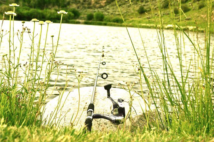 Gone Fishing - Aili Thomas