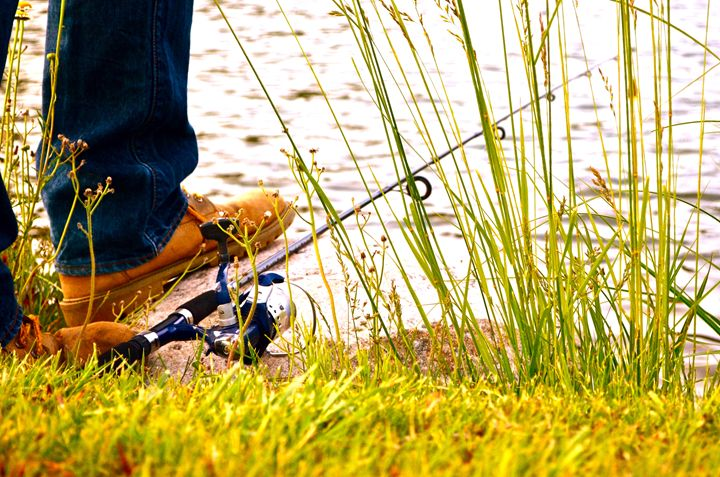 Wishing I was Fishing - Aili Thomas