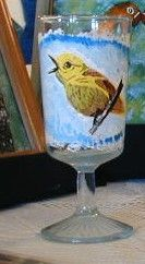 yellow warbler on glass