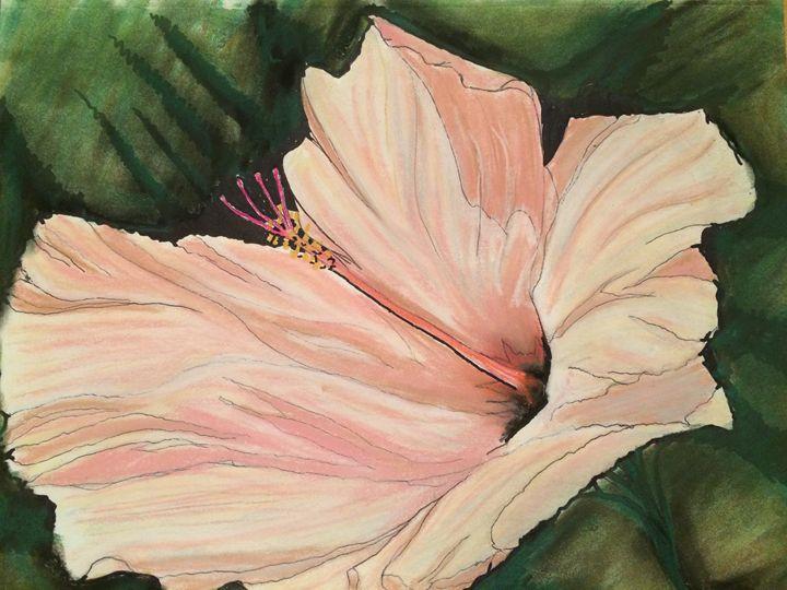 Pink Hibiscus - Boyd Creates