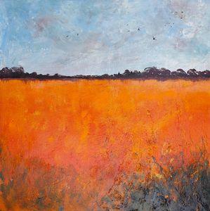 Orange fields & Swallows