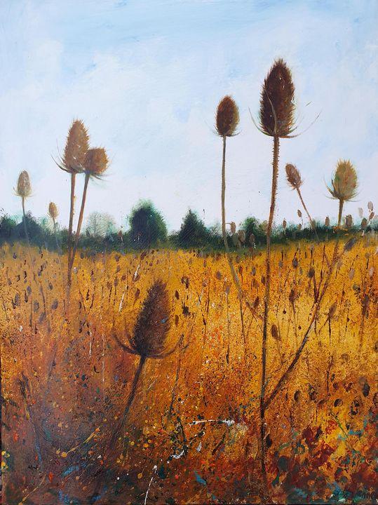 Field of Teasels - Teresa Tanner