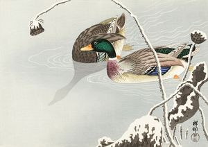 Two Mallards near a Snow-Covered Lot