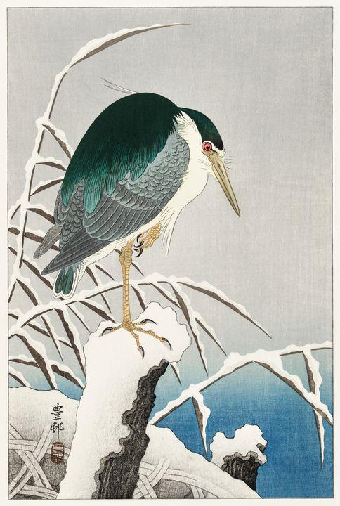 Heron in snow -  Jezzasway