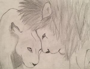 Lioness love