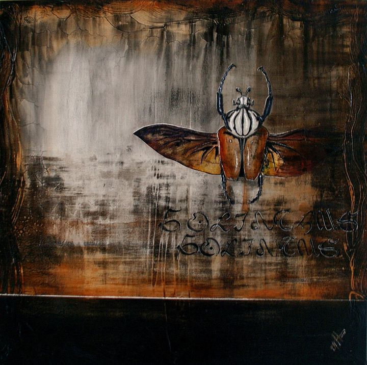 goliathus goliathus - Atelier Hoffmann