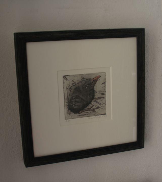 blackbird chick - Atelier Hoffmann
