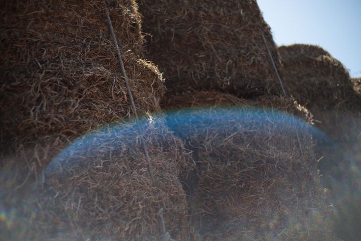 Hay stack - She Paints with Light