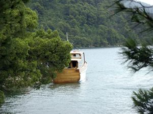Pine and boat