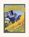 Matted Print: Aspen