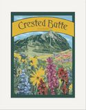 Matted Print: Crested Butte