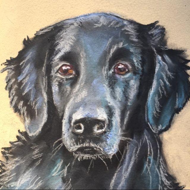 Serious Canine - Kathryn Leonhardt