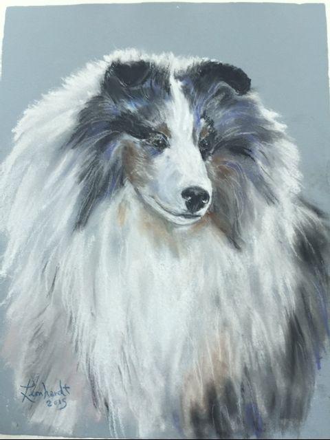 Blue Meryl Sheltie - Kathryn Leonhardt